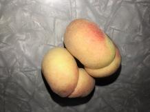 *PeachesSnuggle.jpg